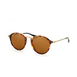 Ray Ban Round Fleck RB2447-1160