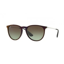 купить Ray Ban Highstreet RB 4171-6316E8